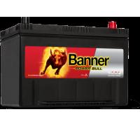 Автомобильный аккумулятор  Banner 95 Ач 306x173x225
