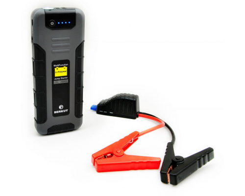 Зарядное устройство BERKUT Specialist